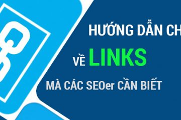 Hướng dẫn chi tiết về link chất lượng, hình phạt về link và liên kết xấu
